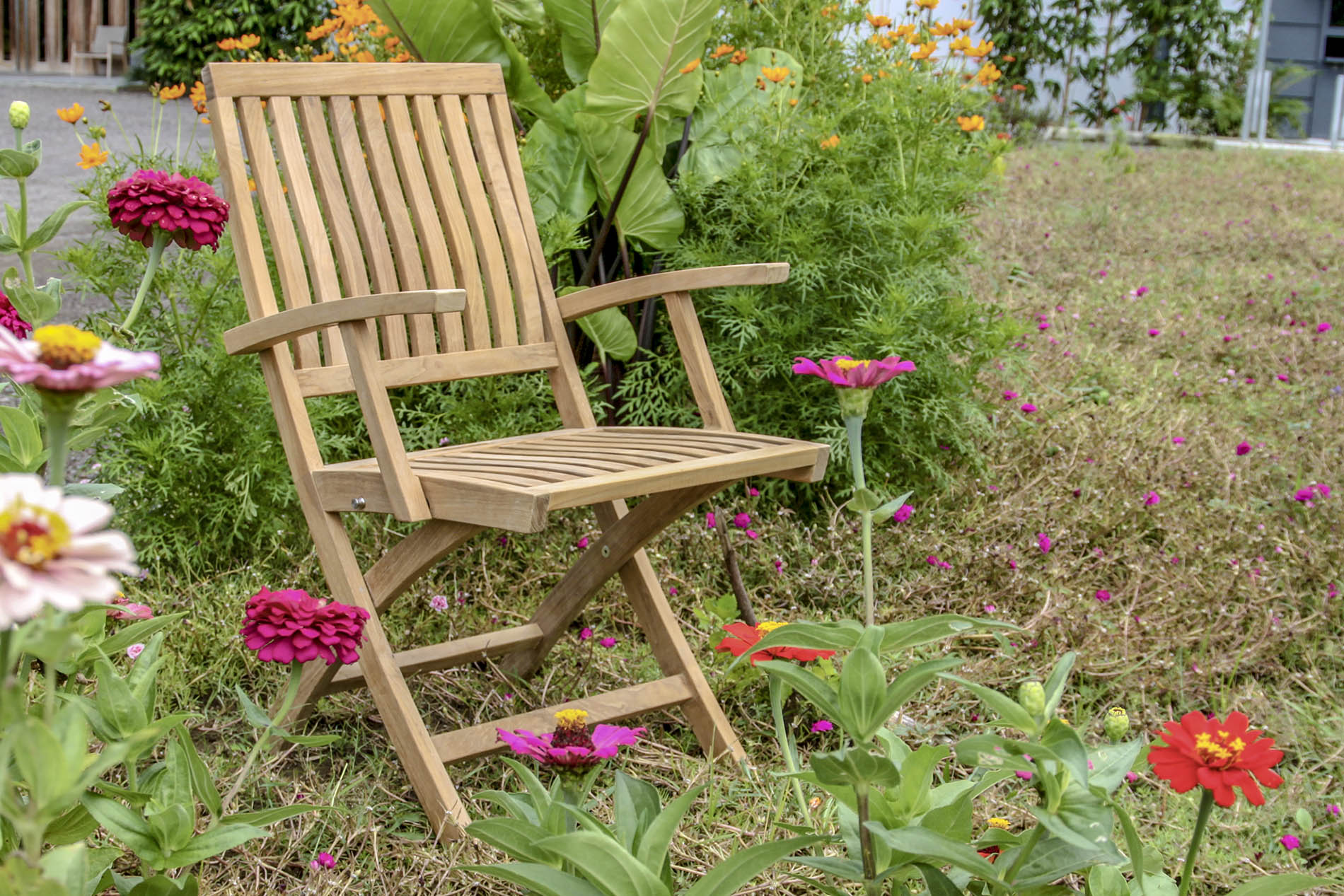 ICON FOLDING CHAIR with TEAK