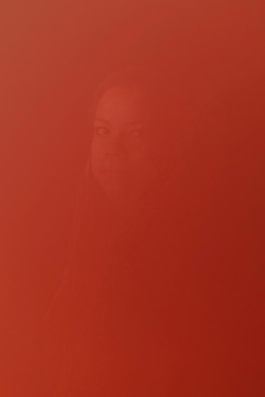 DinaKantor-Silenced-2.jpg