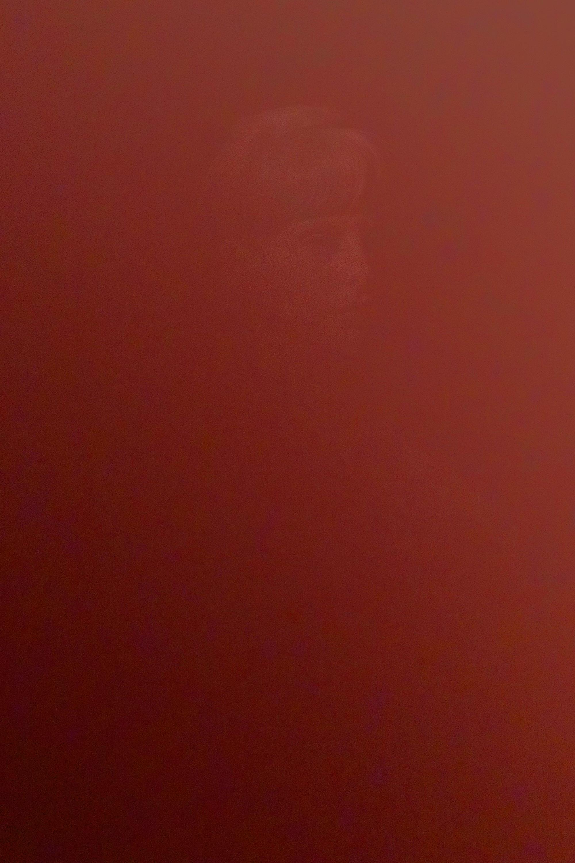 DinaKantor-Silenced-1.jpg