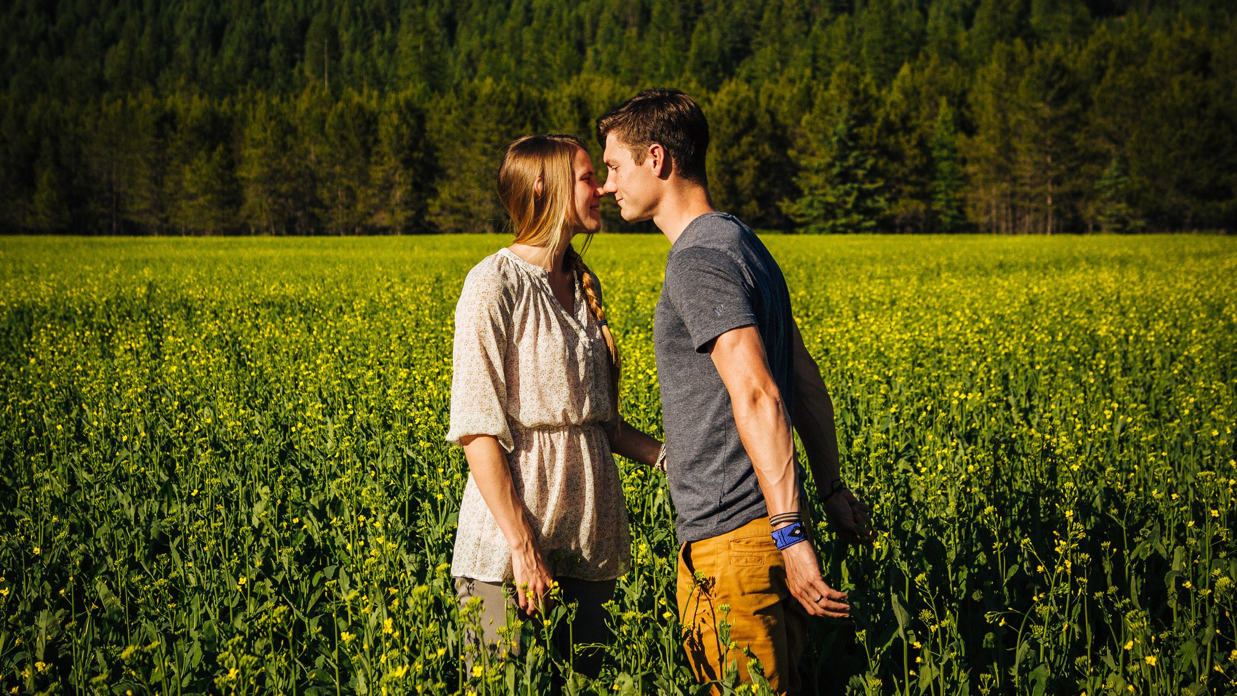 Engagement Photography. Couple in a field of Canola flowers