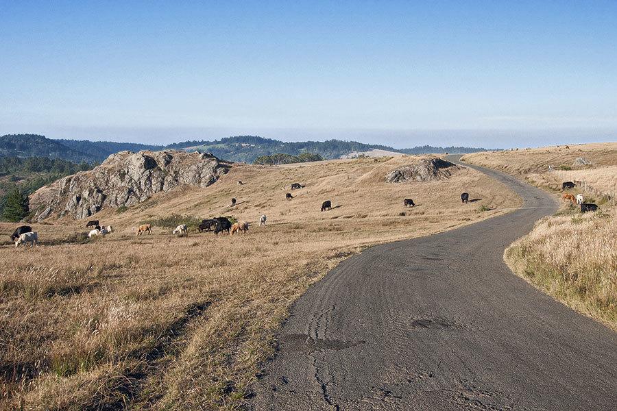 coleman-valley-road.jpg