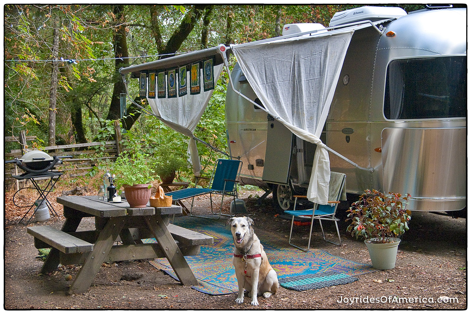 Wine country hideaway at Bothe Napa Valley State Park - volunteer site.