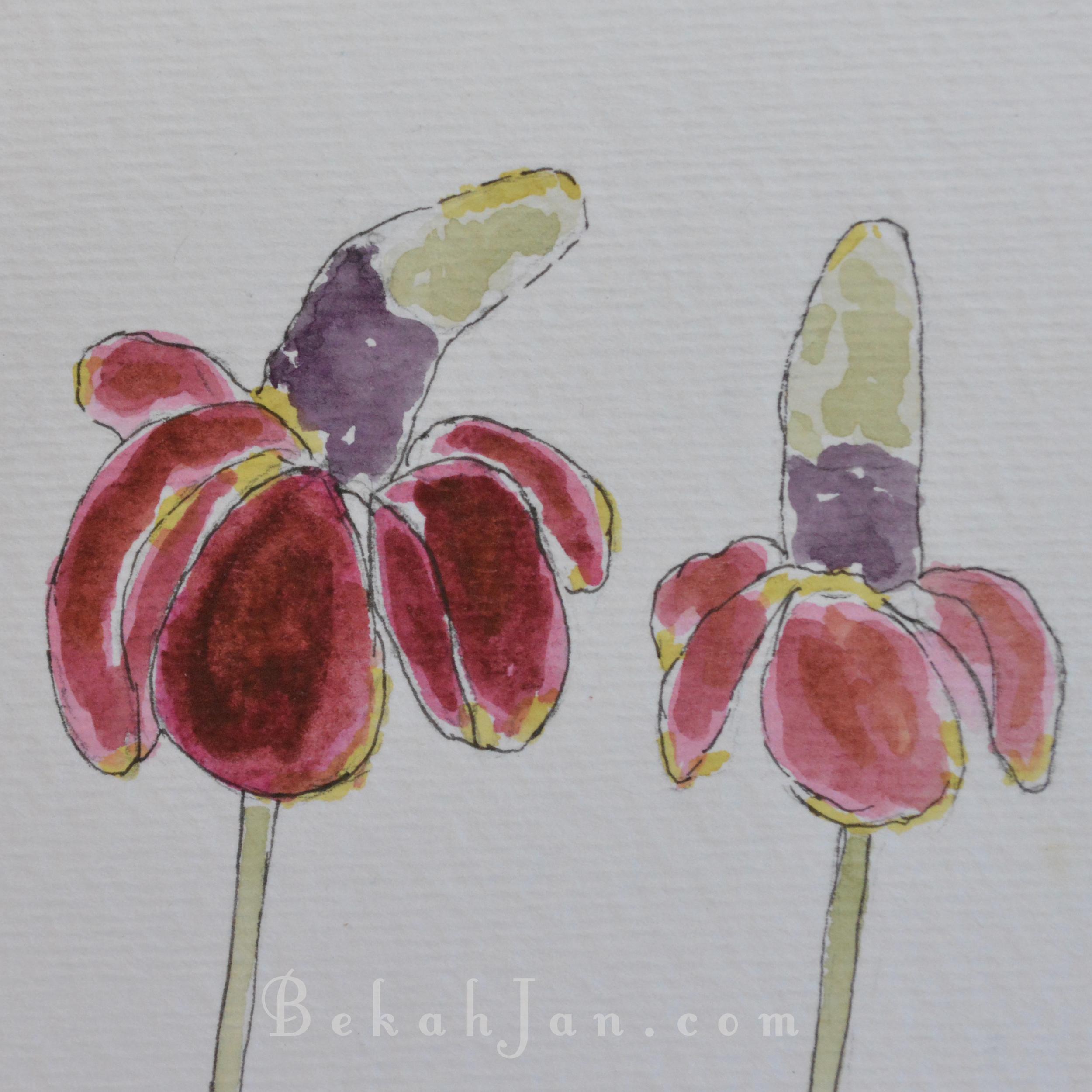 Flower 1 W.jpg