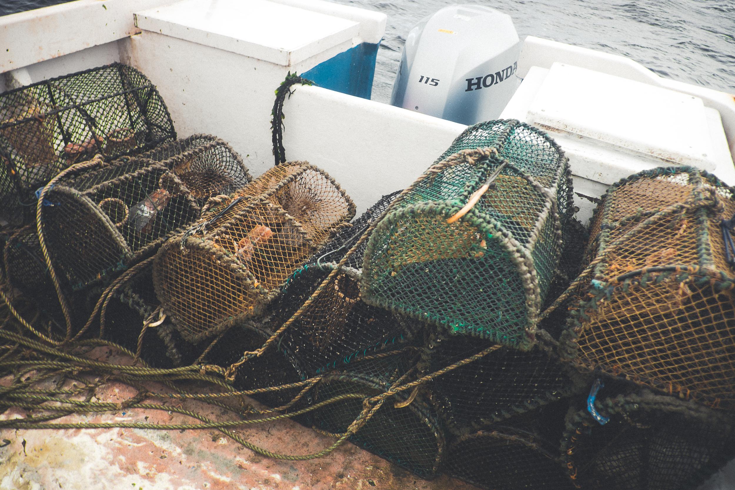 scotland_ernest_hughie_fisherman-17.jpg
