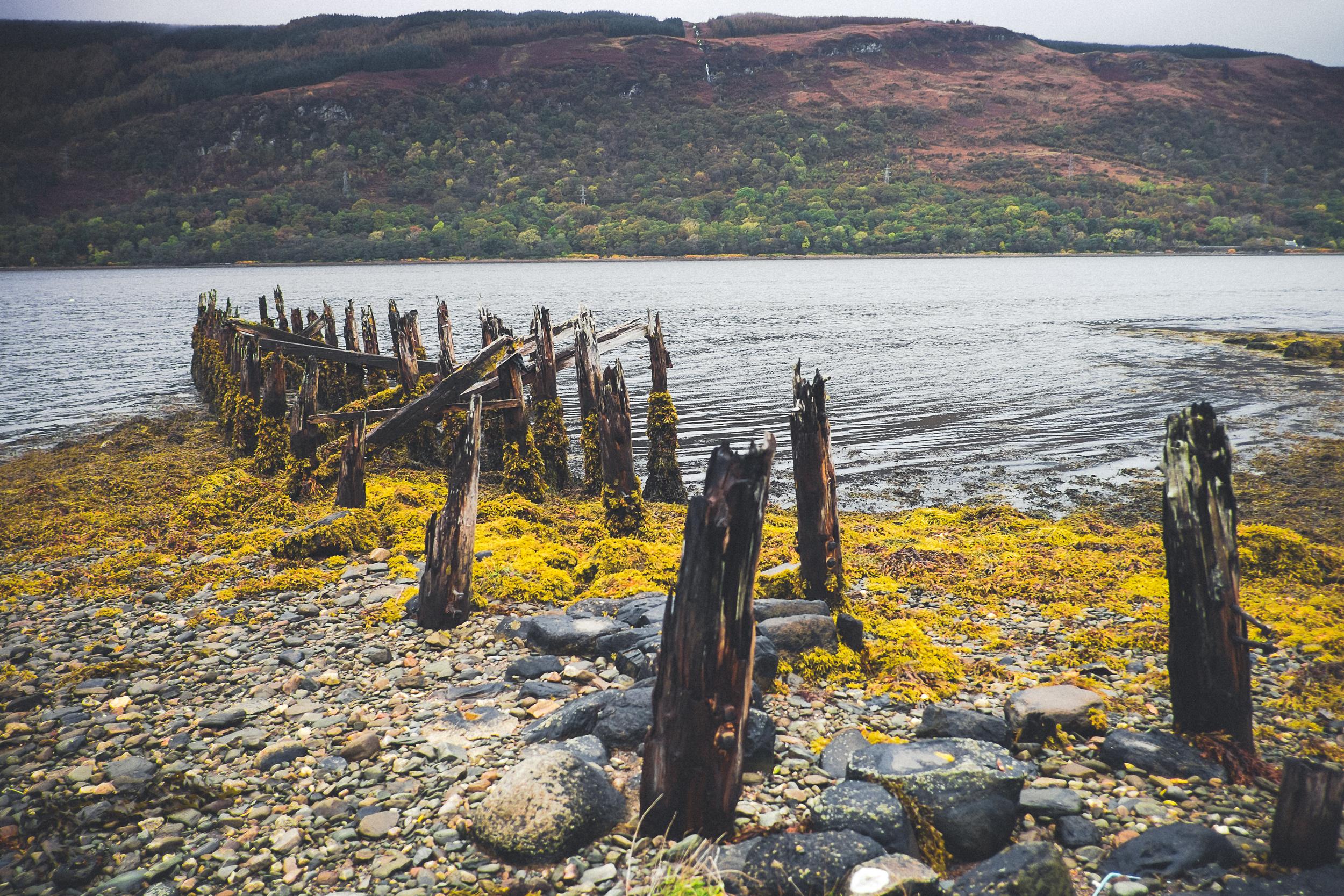 scotland_ernest_lochfyne_oysters-18.jpg