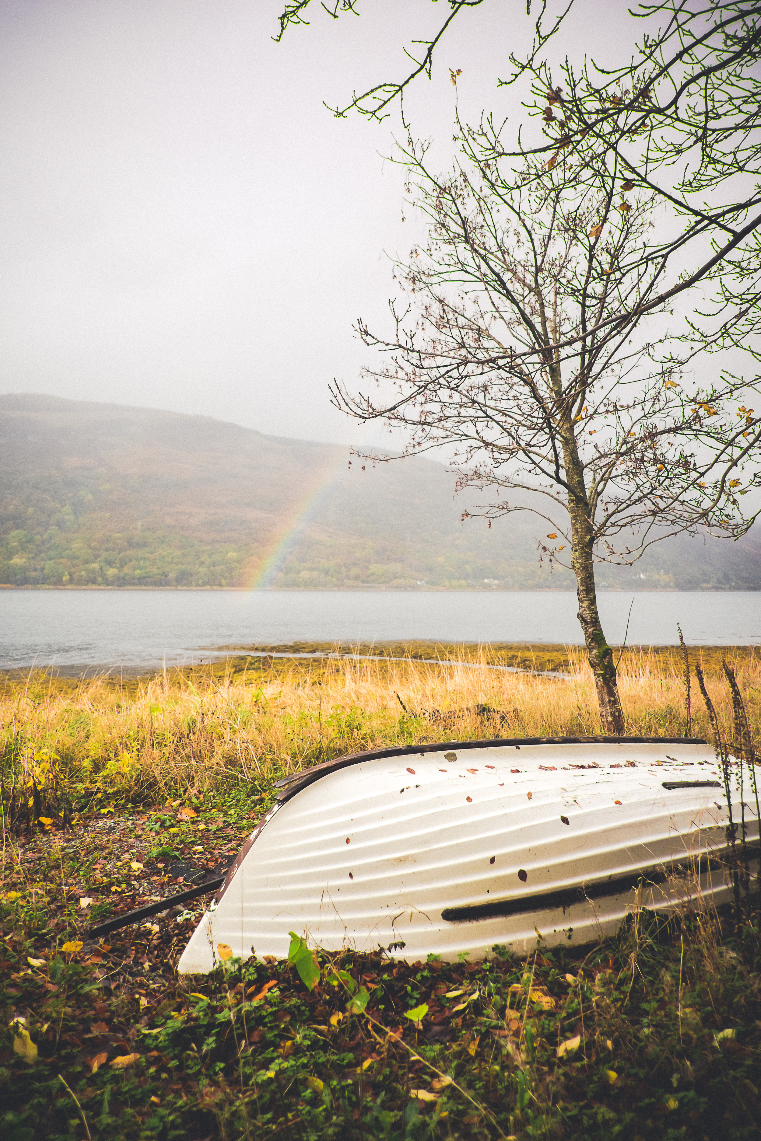 scotland_ernest_covershot-3.jpg