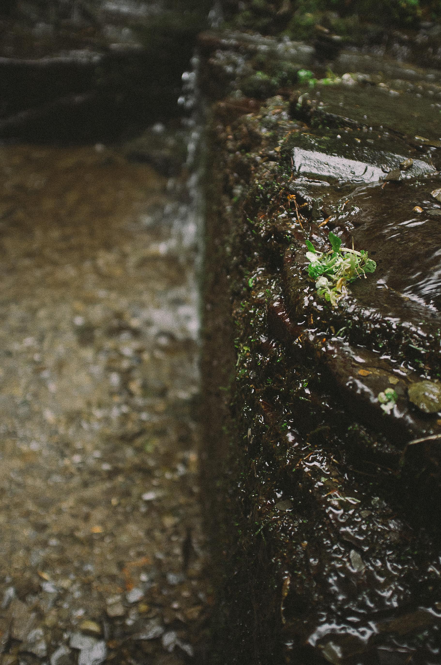 Fuji X100 Waterfall Photography-21.jpg