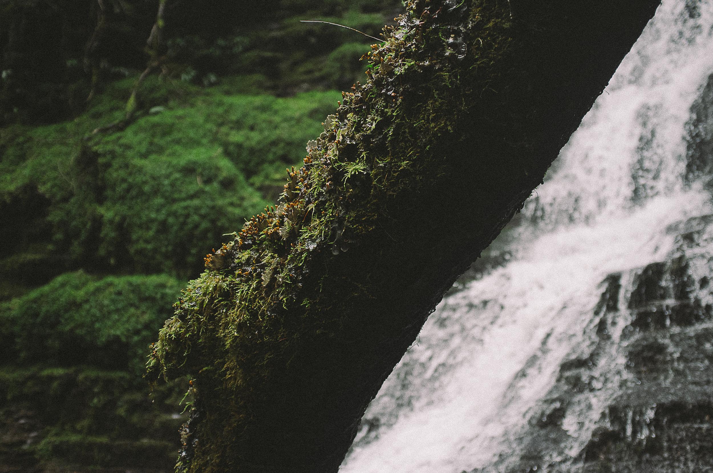 Fuji X100 Waterfall Photography-23.jpg