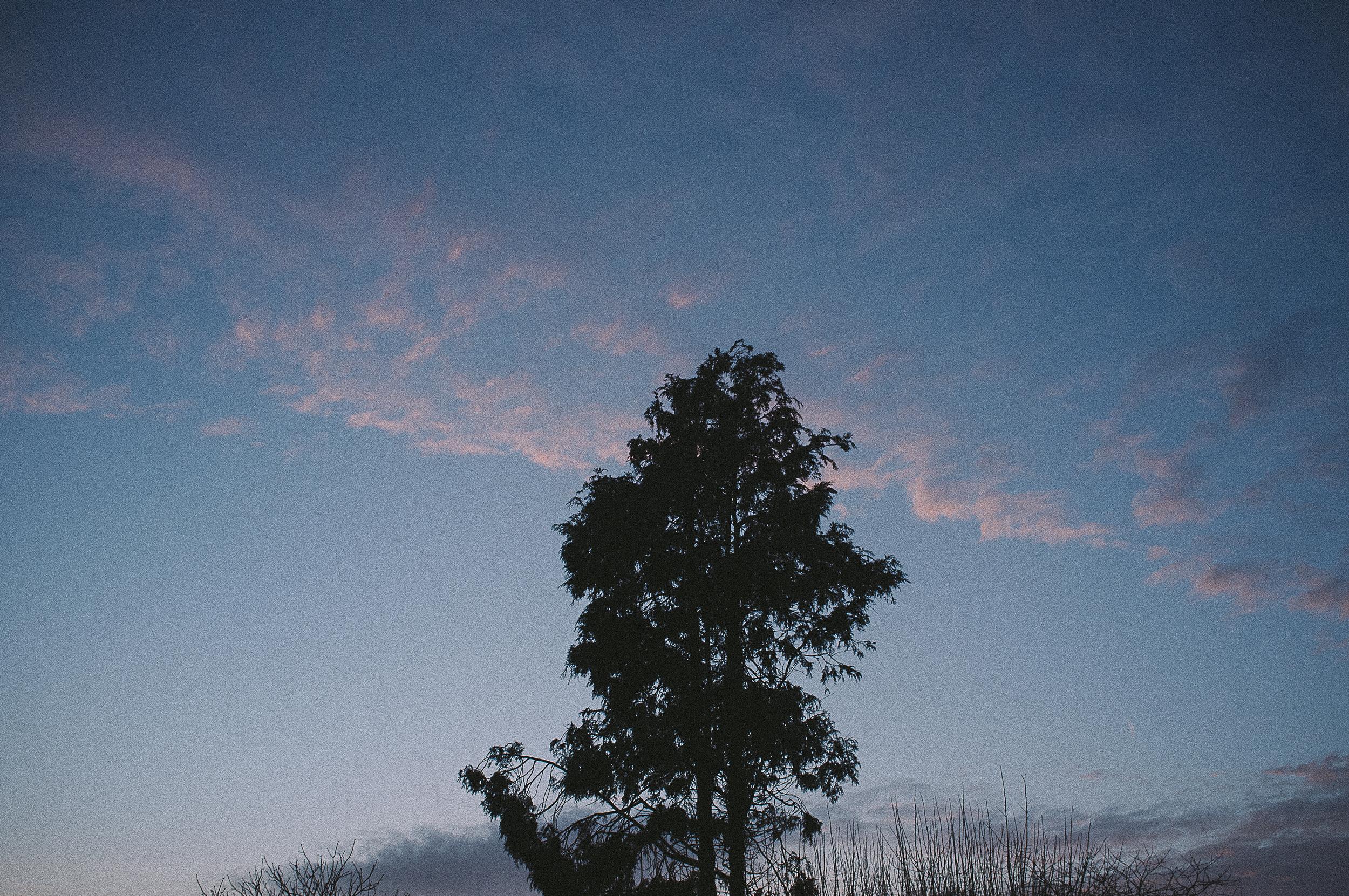 photos-9.jpg