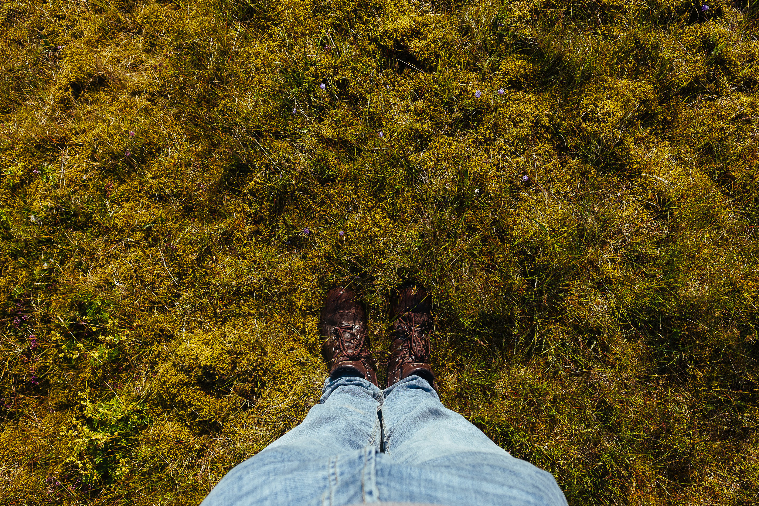 iceland feet-20.jpg