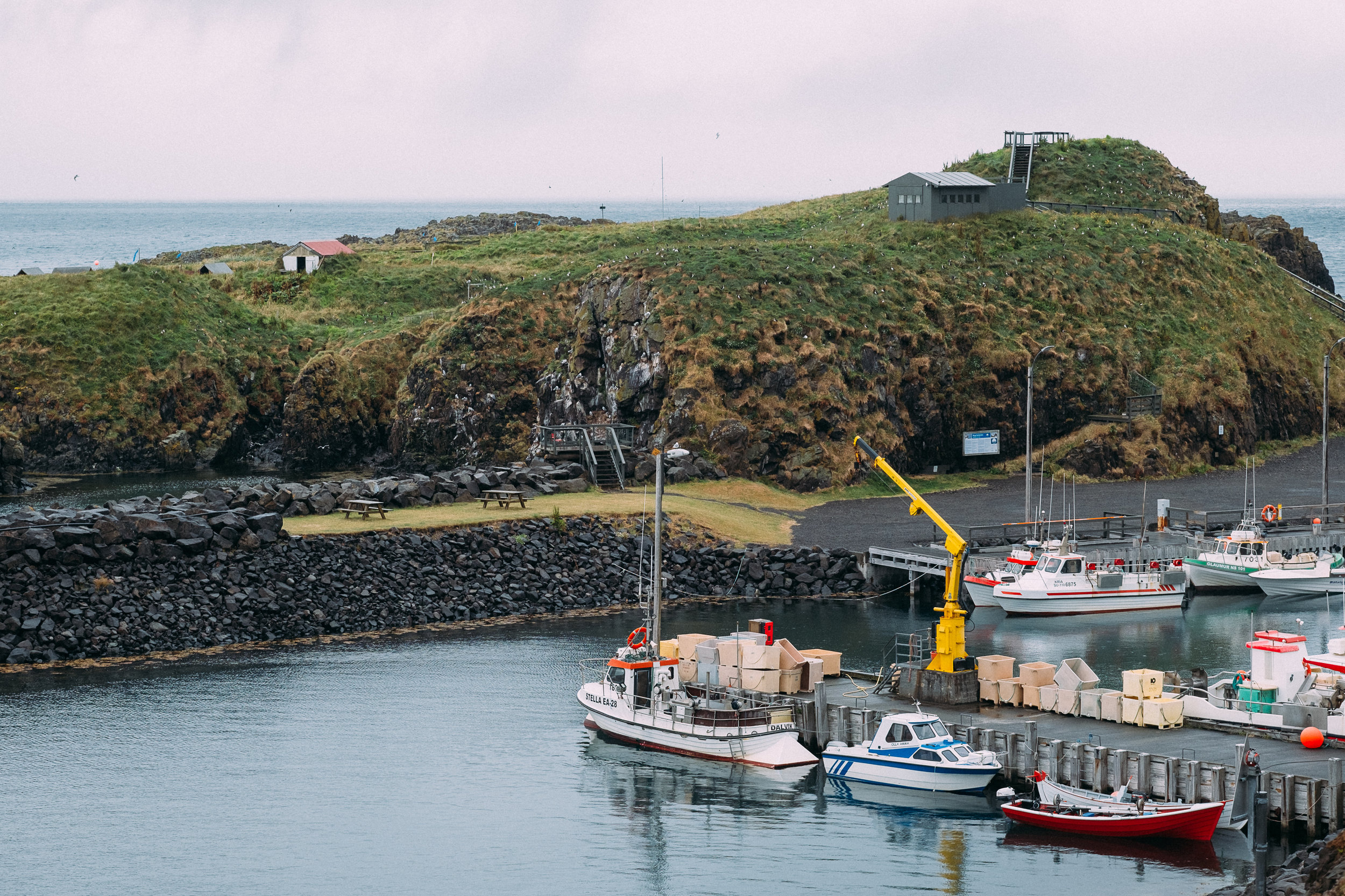 Puffin island, behind the marina.