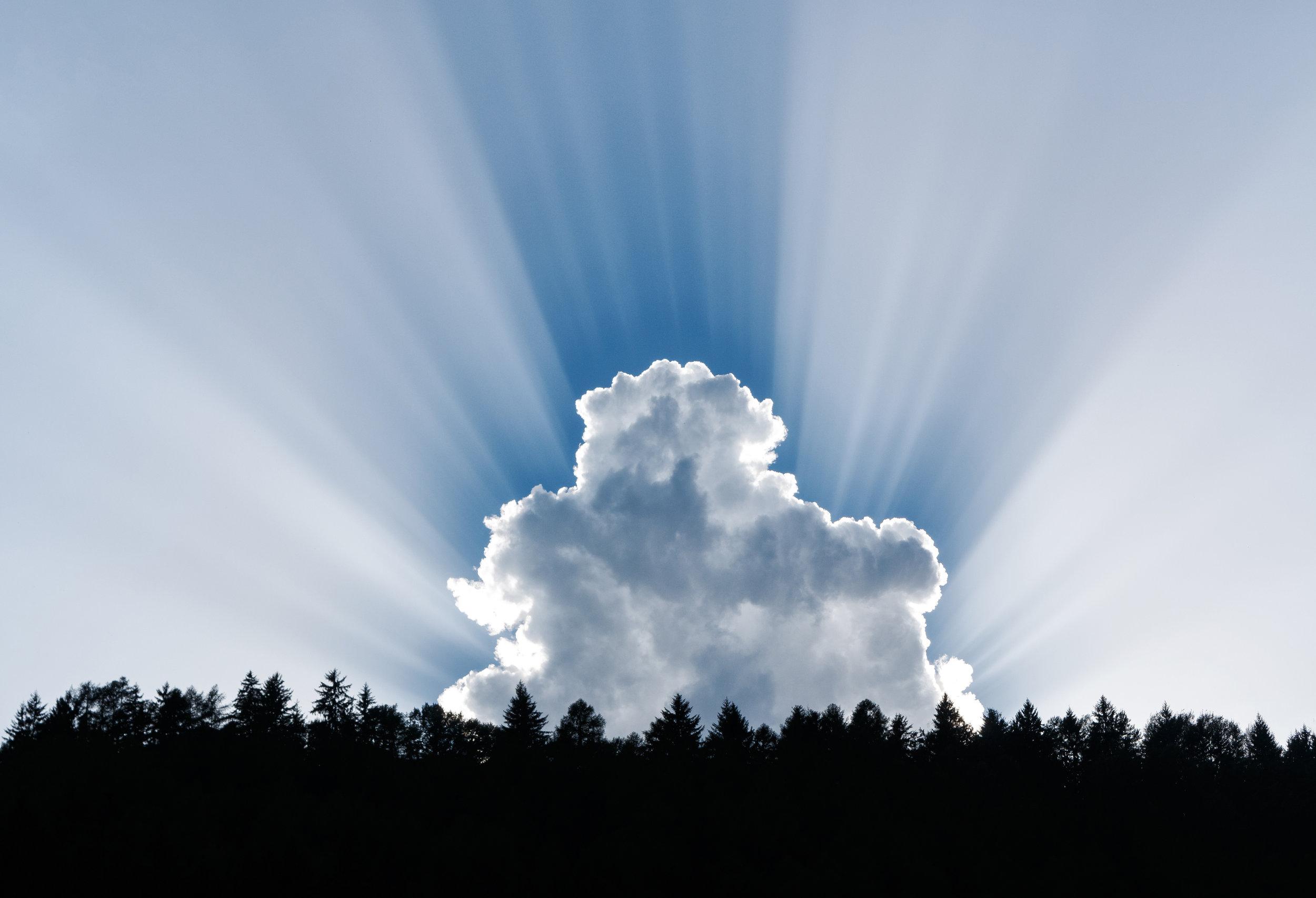 NetTec NSI Cloud Services