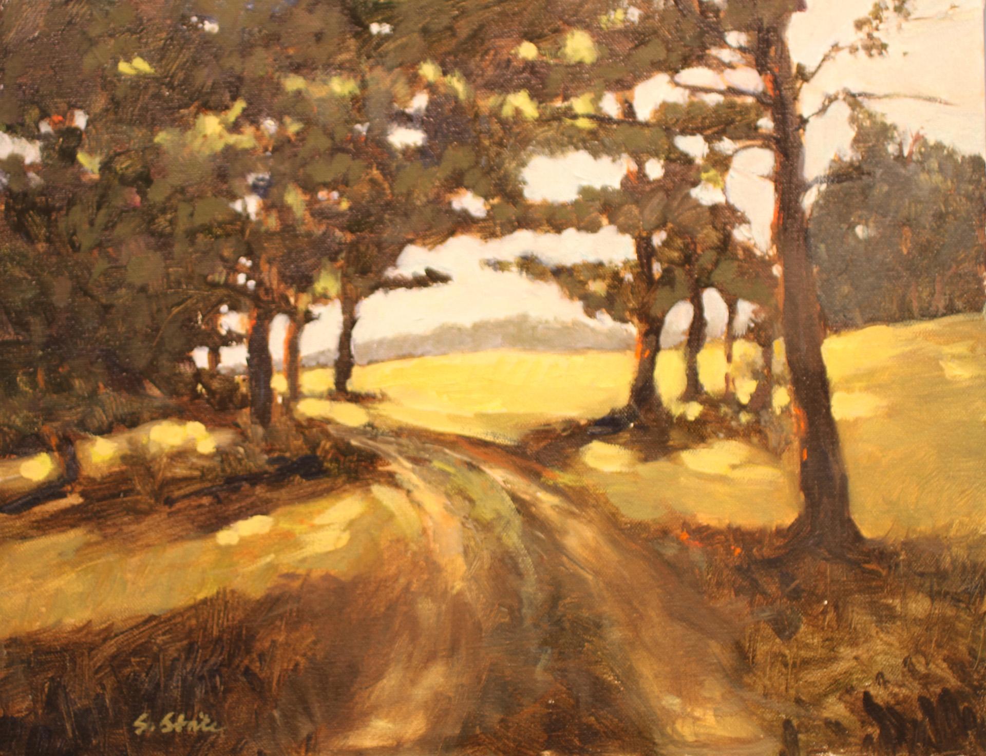 Shenandoah Mountain Road