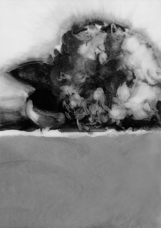 03-Hydrangea1.jpg
