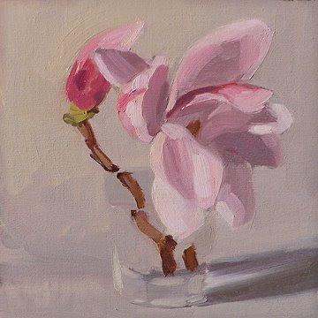Magnolia_042108.jpg