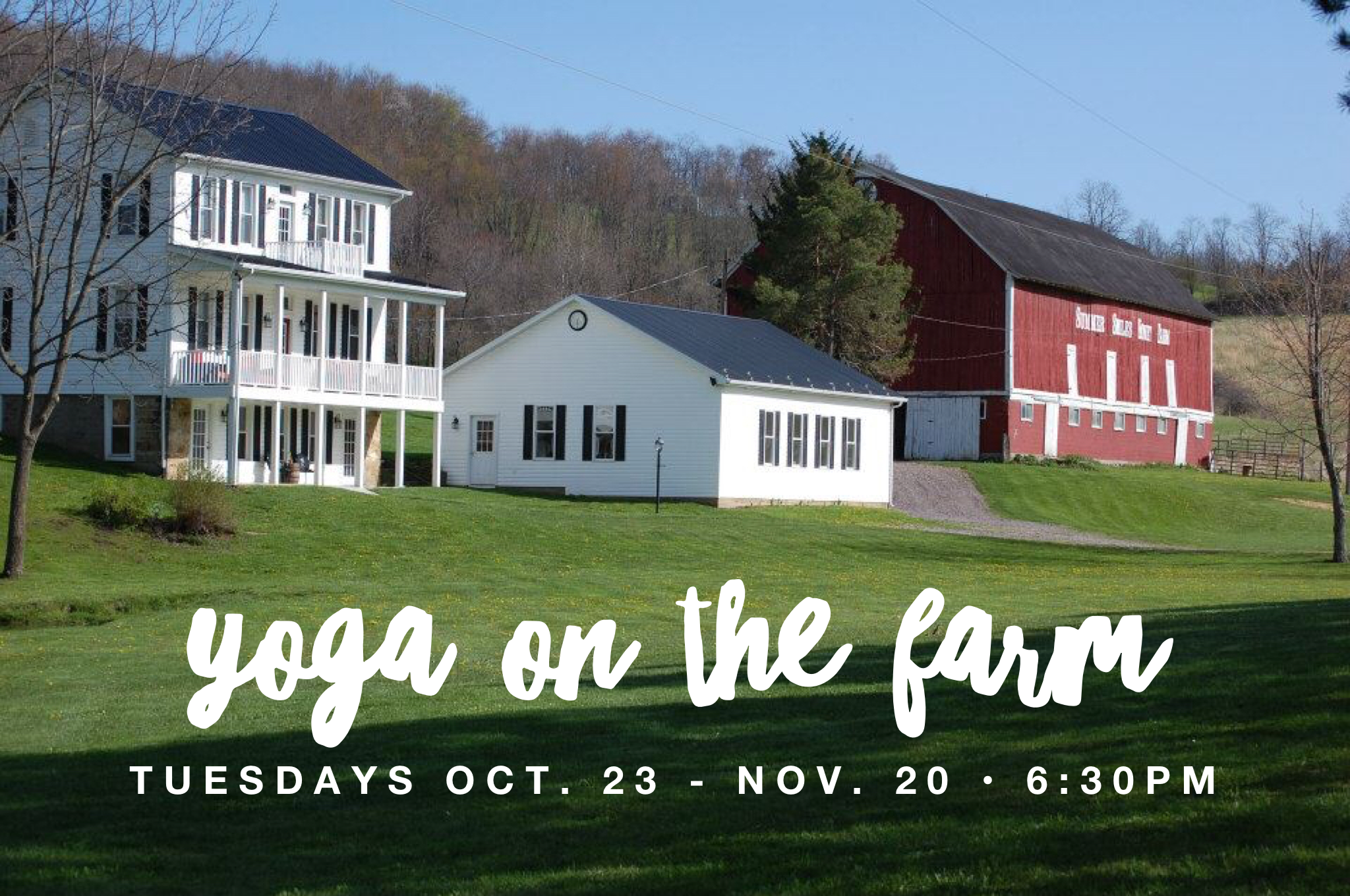 Yoga Classes at Summer Smiles Honey Farm in Stoystown