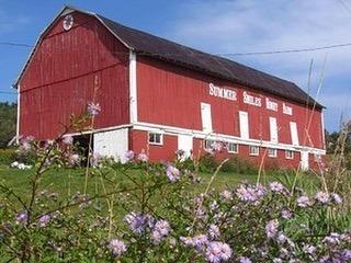 Summer Smiles Honey Farm