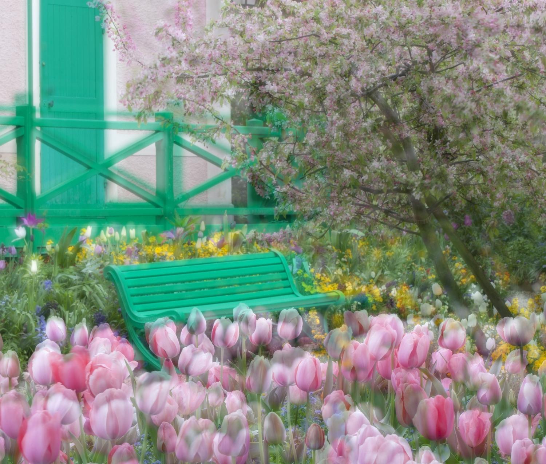 Monet's backyard garden in Giverny, France