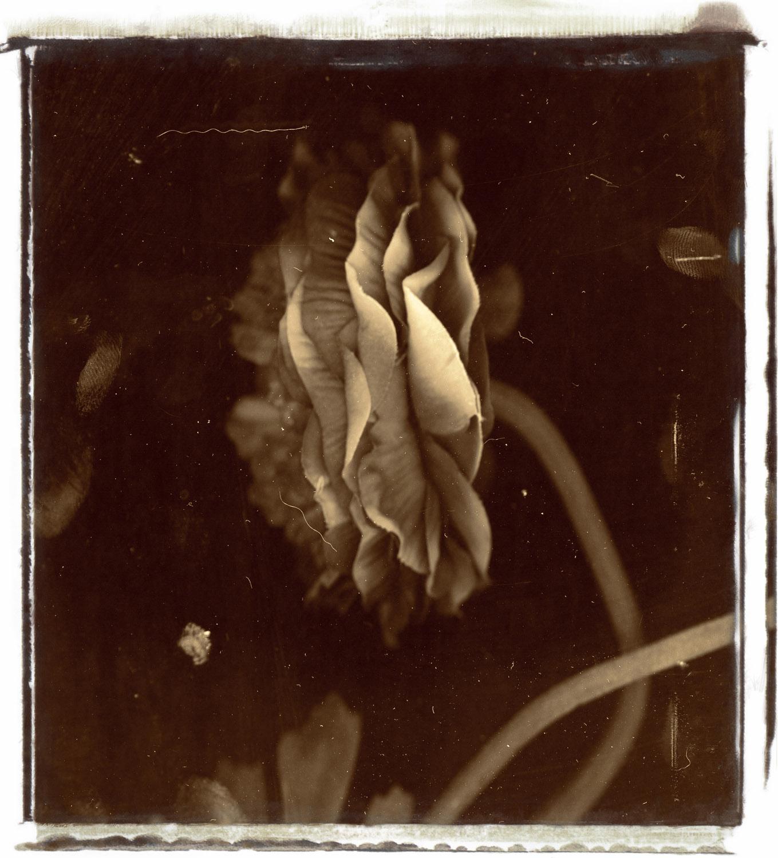 Untitled-3b.jpg