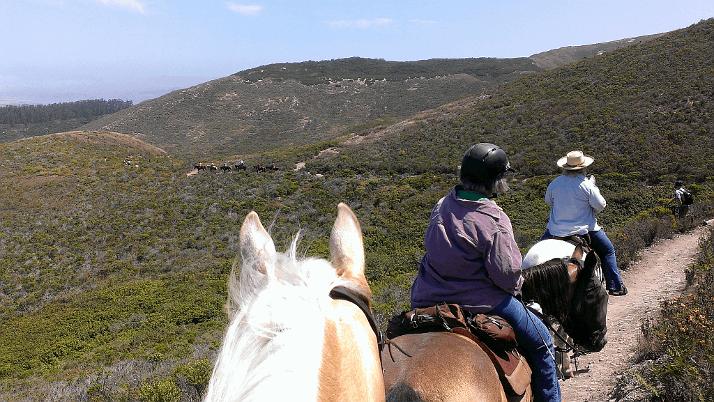 trail ride 1024 webop.png