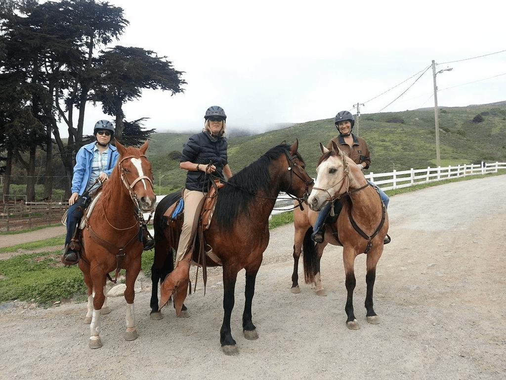 Spring Ride 12.png