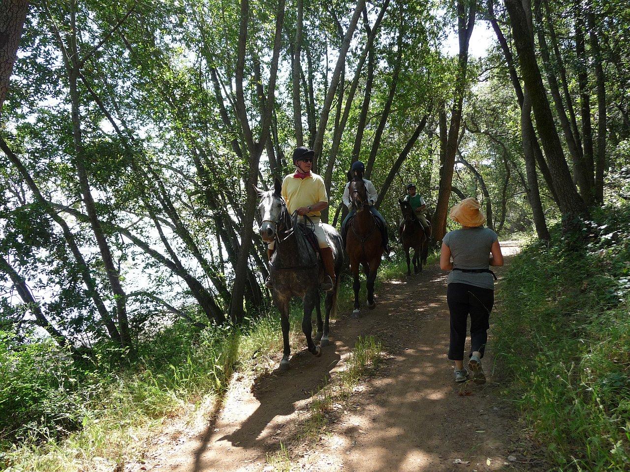 Rush Creek horses n hikers 1280 webop.jpg