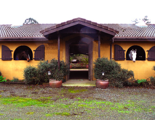 Kilham Farm