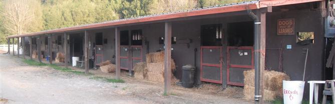 The Dickson Ranch