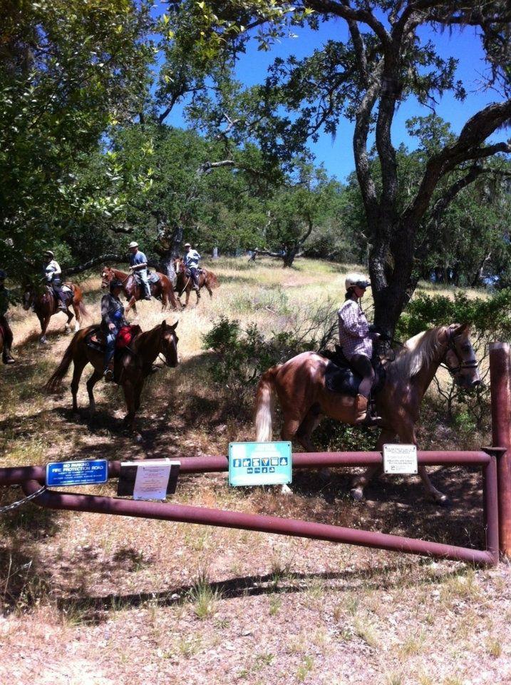 Sierra group Rush Creek.jpg