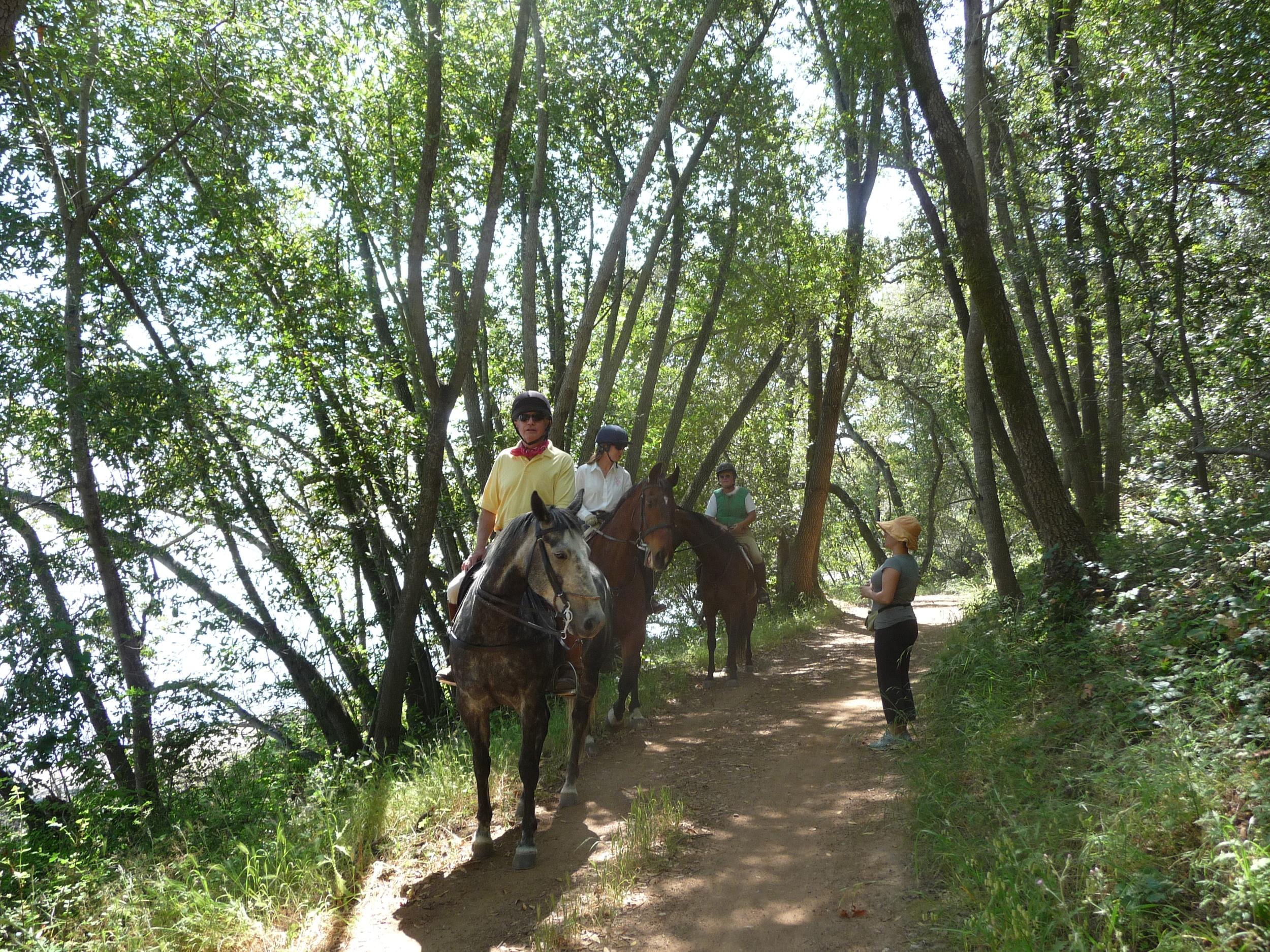 Rush creek horse hiker stop.jpg