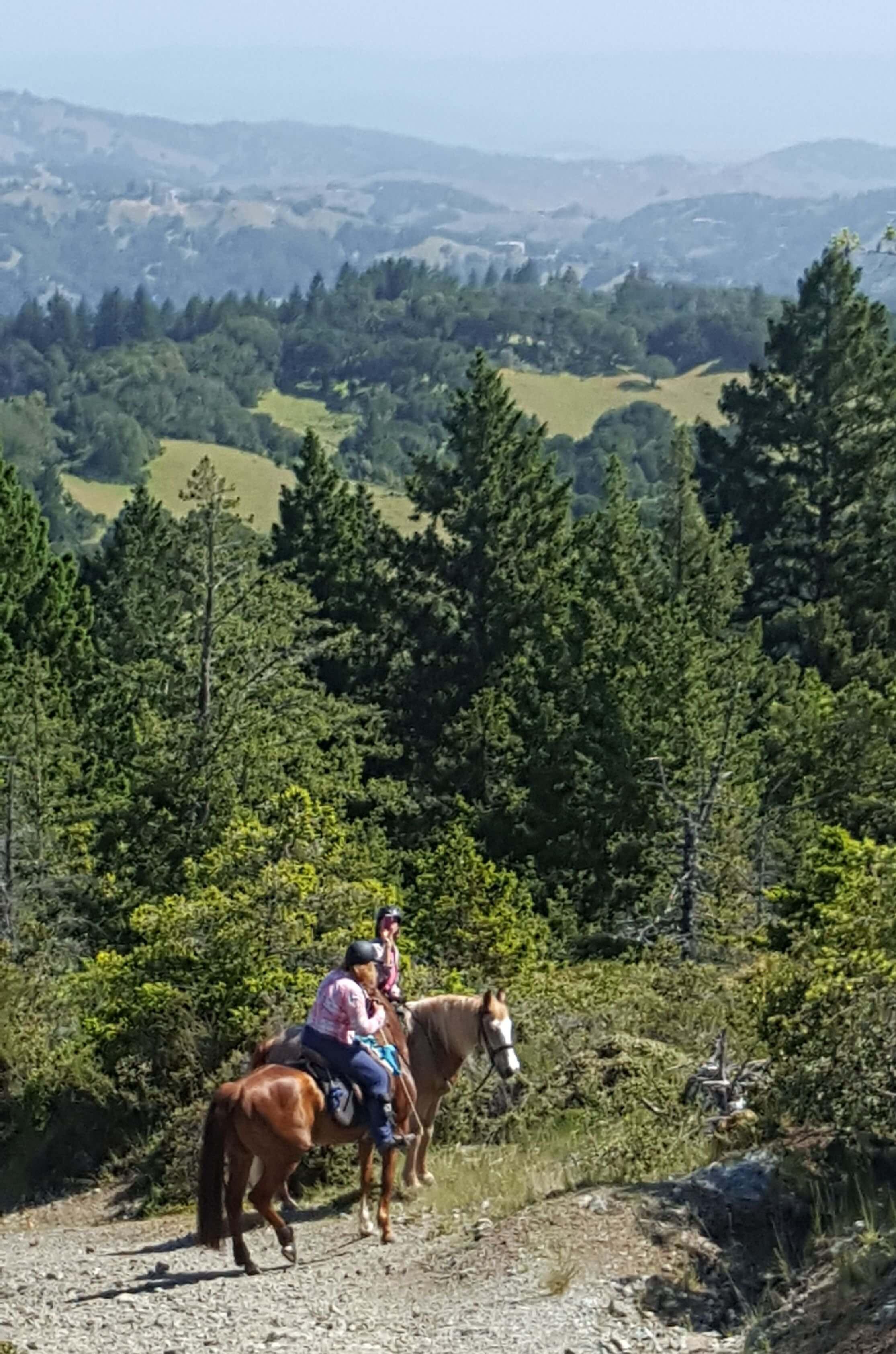 Bon Tempe Spring Ride View