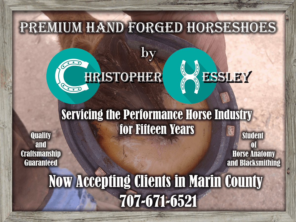 Hand Forged Horseshoes by Christopher Hessley