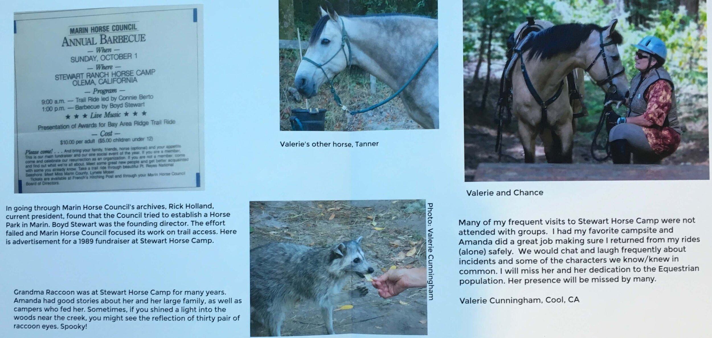 Stewart Horse Camp book insert photo 1(2)(1).jpg