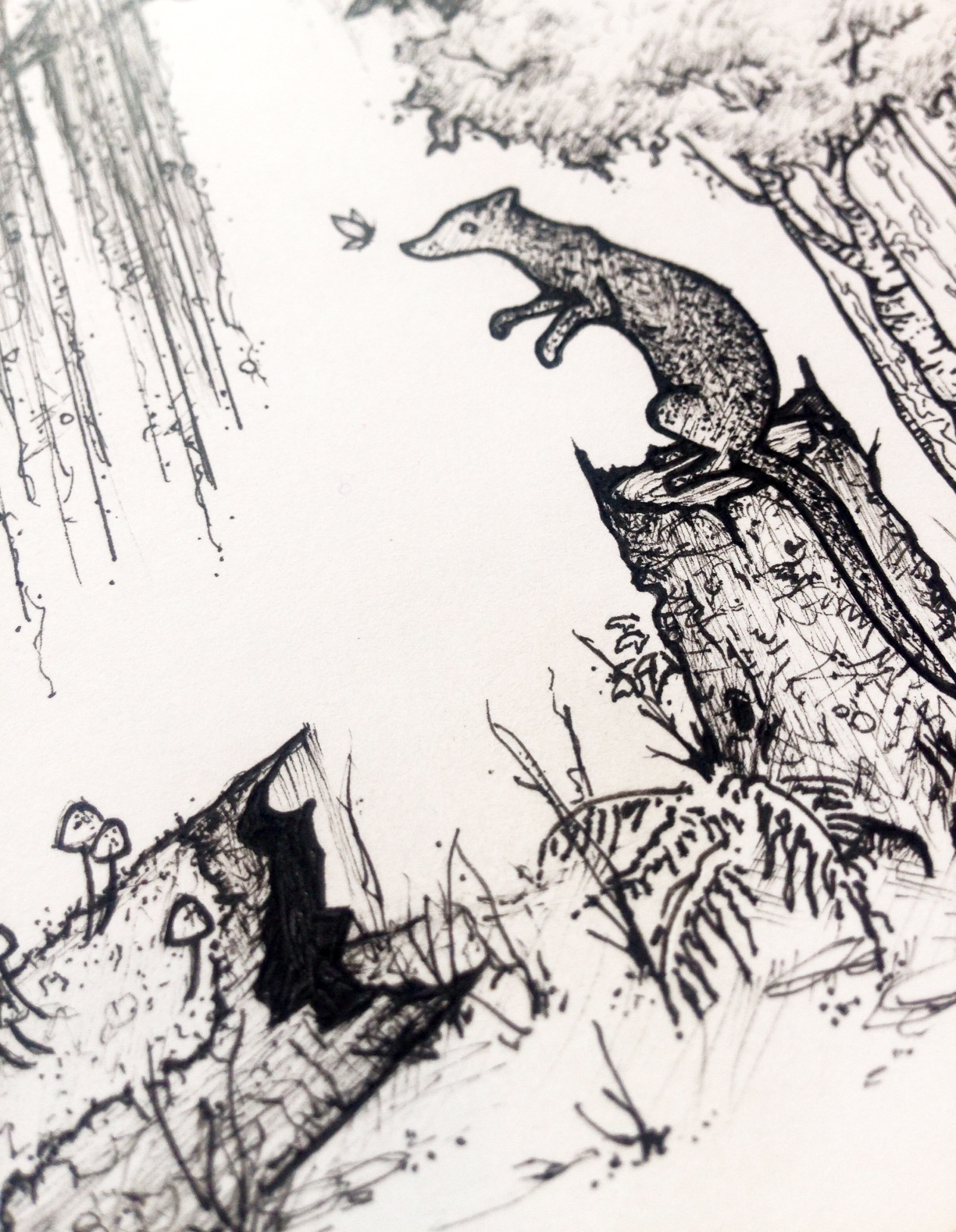 Weasel in the Woods (detail)