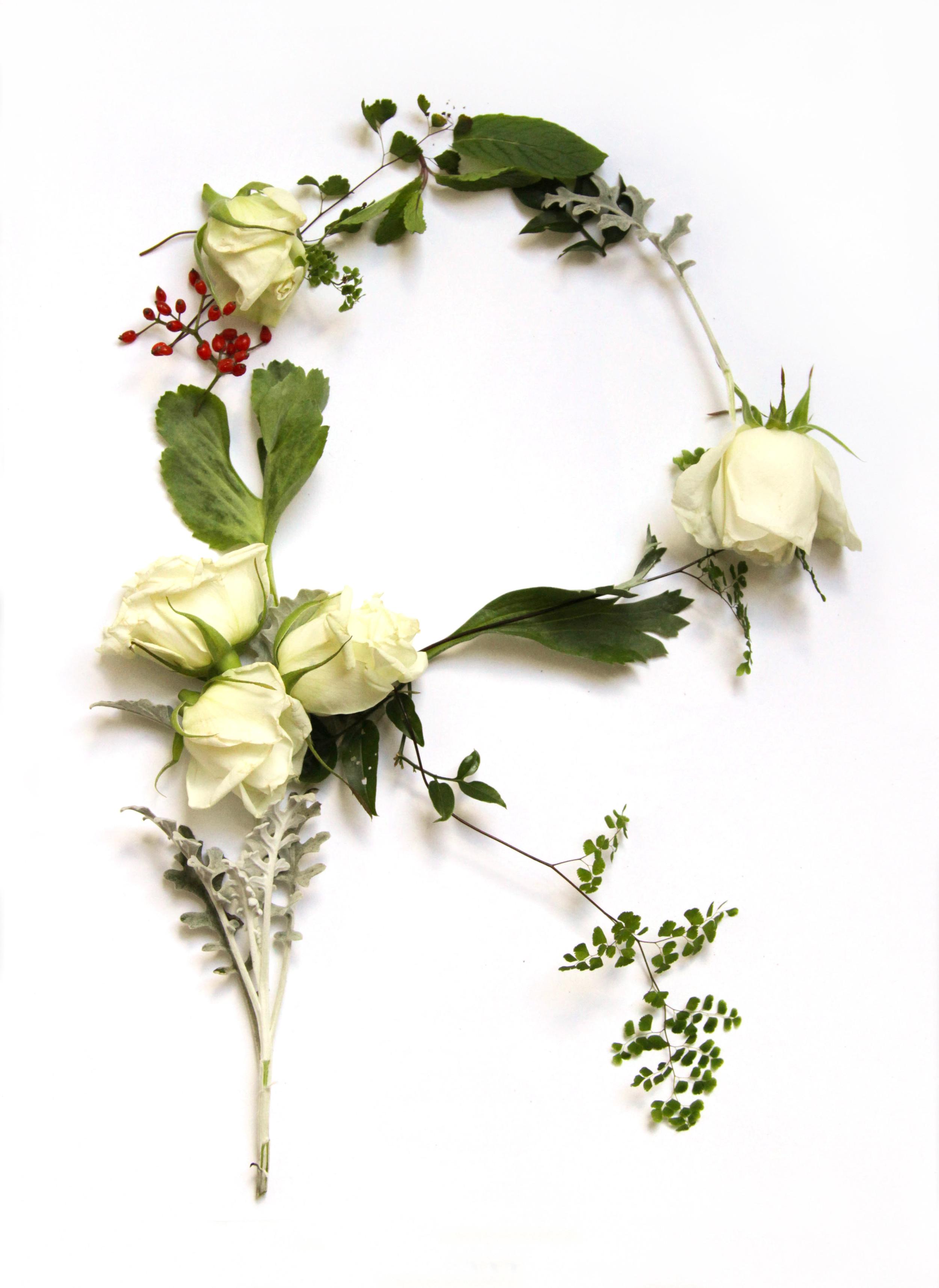 Flora-1028.jpg