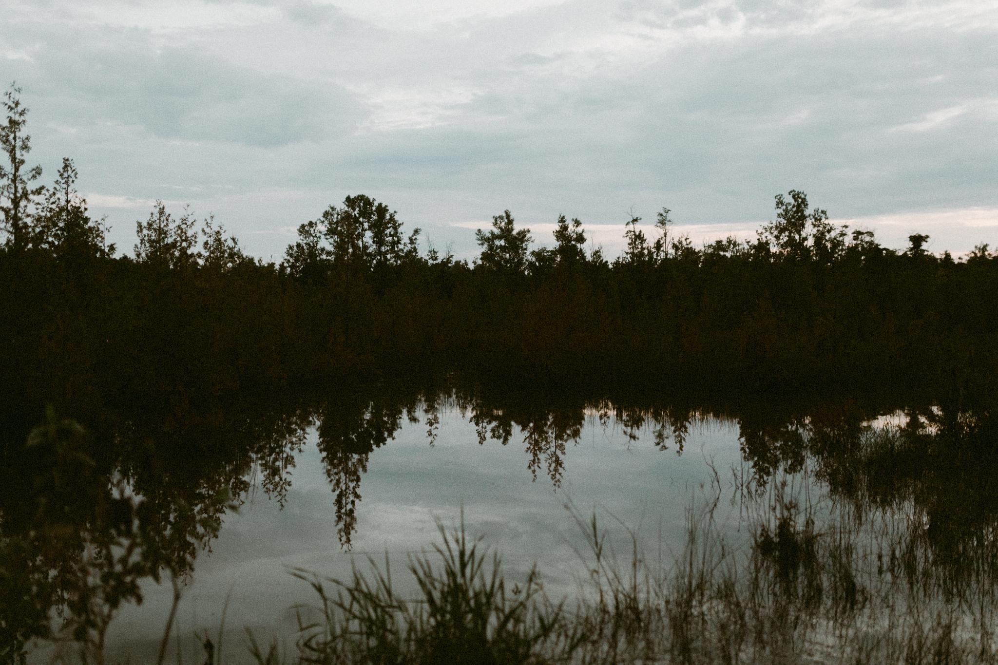 Drake Devonshire + Northern Wildflower +Elopement (162 of 169).jpg
