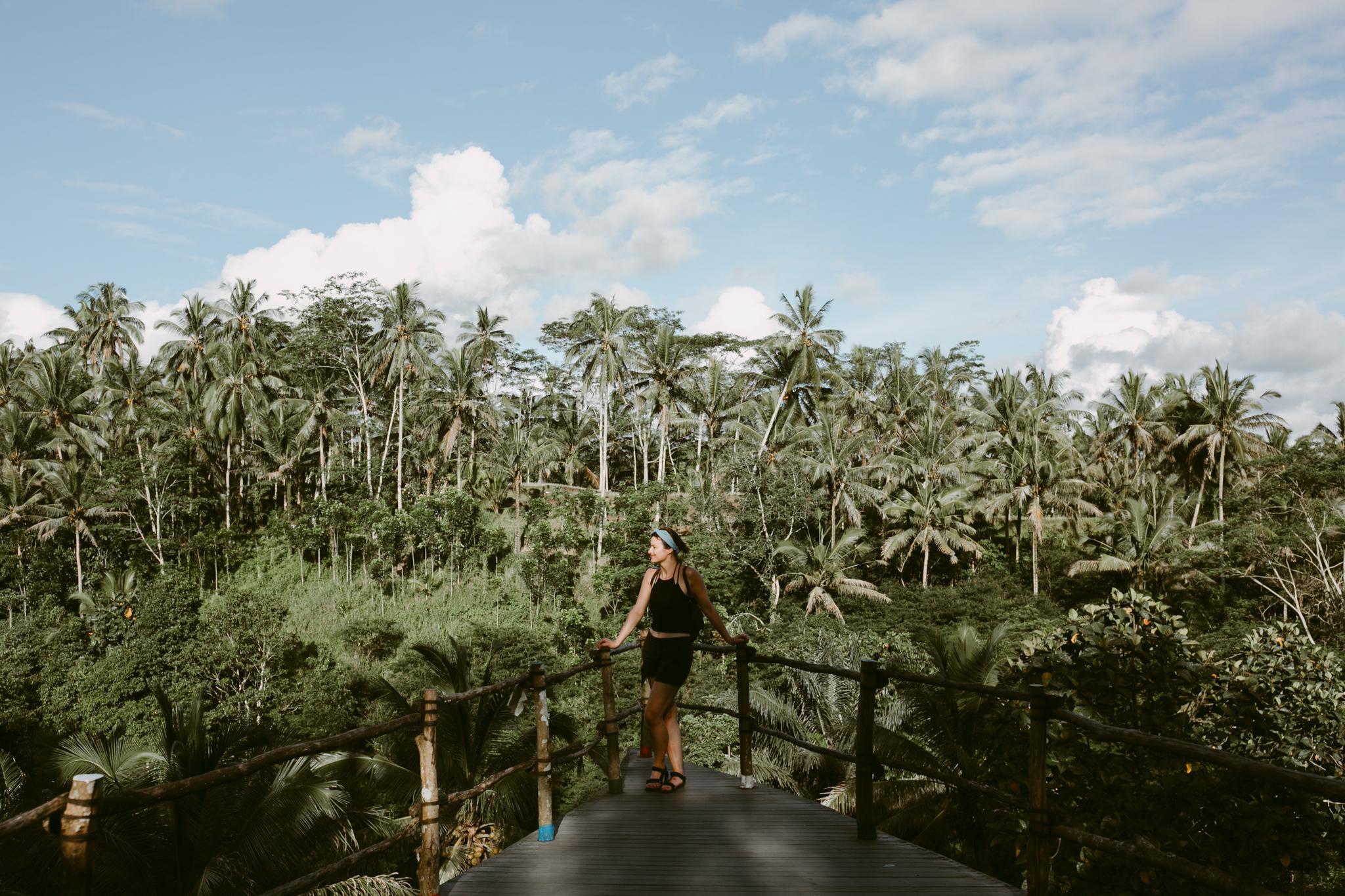 Bali Ricefields.jpg
