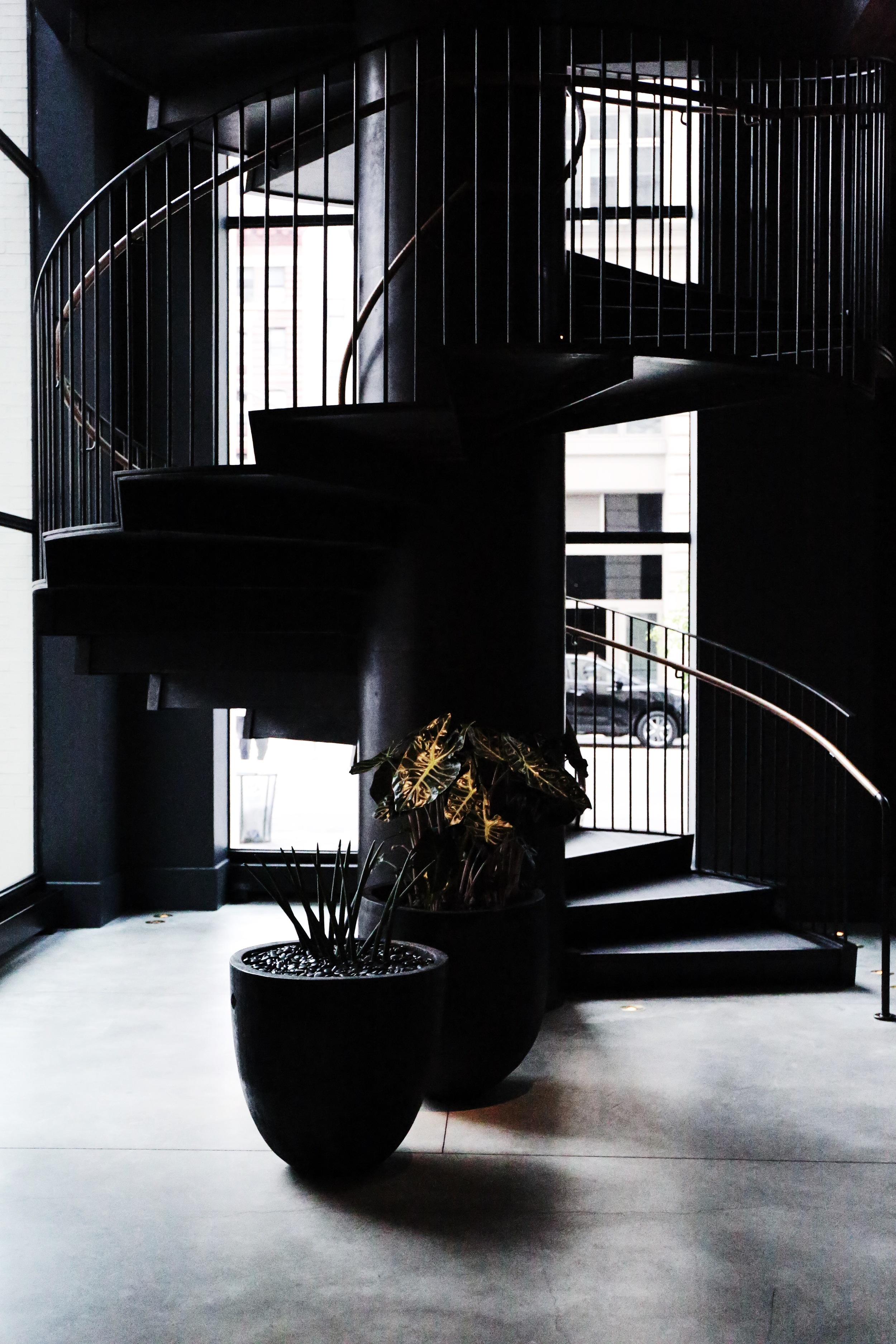 This staircase led to the second story library area. A must see whether you are staying at the 11 Howard or not as it is open to the public.