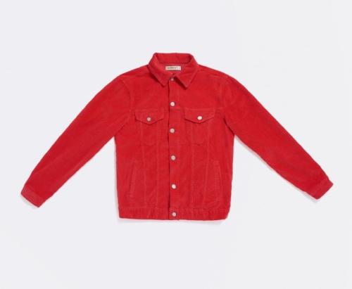 17301502-cut-poppy-red_1.jpg