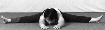 Ultimate Flexibility by Sang H. Kim