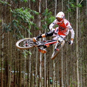 20131104_About Me_Career DH WCup Podiums 201203.jpg