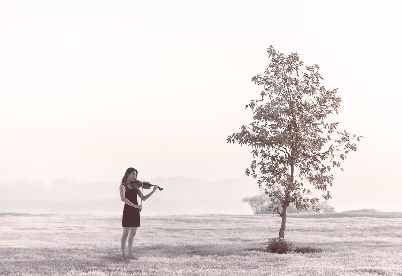 צילום מוזיקאים - אמייה