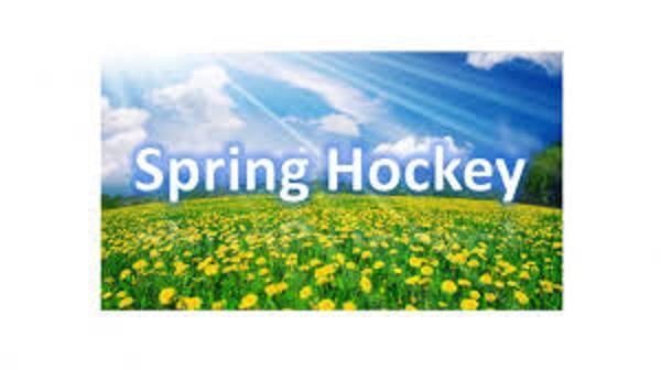 Spring_hockey_logo_large.jpg