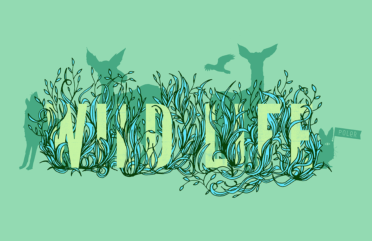 Poler_Wildlife_Tee_0000_Layer Comp 1.jpg
