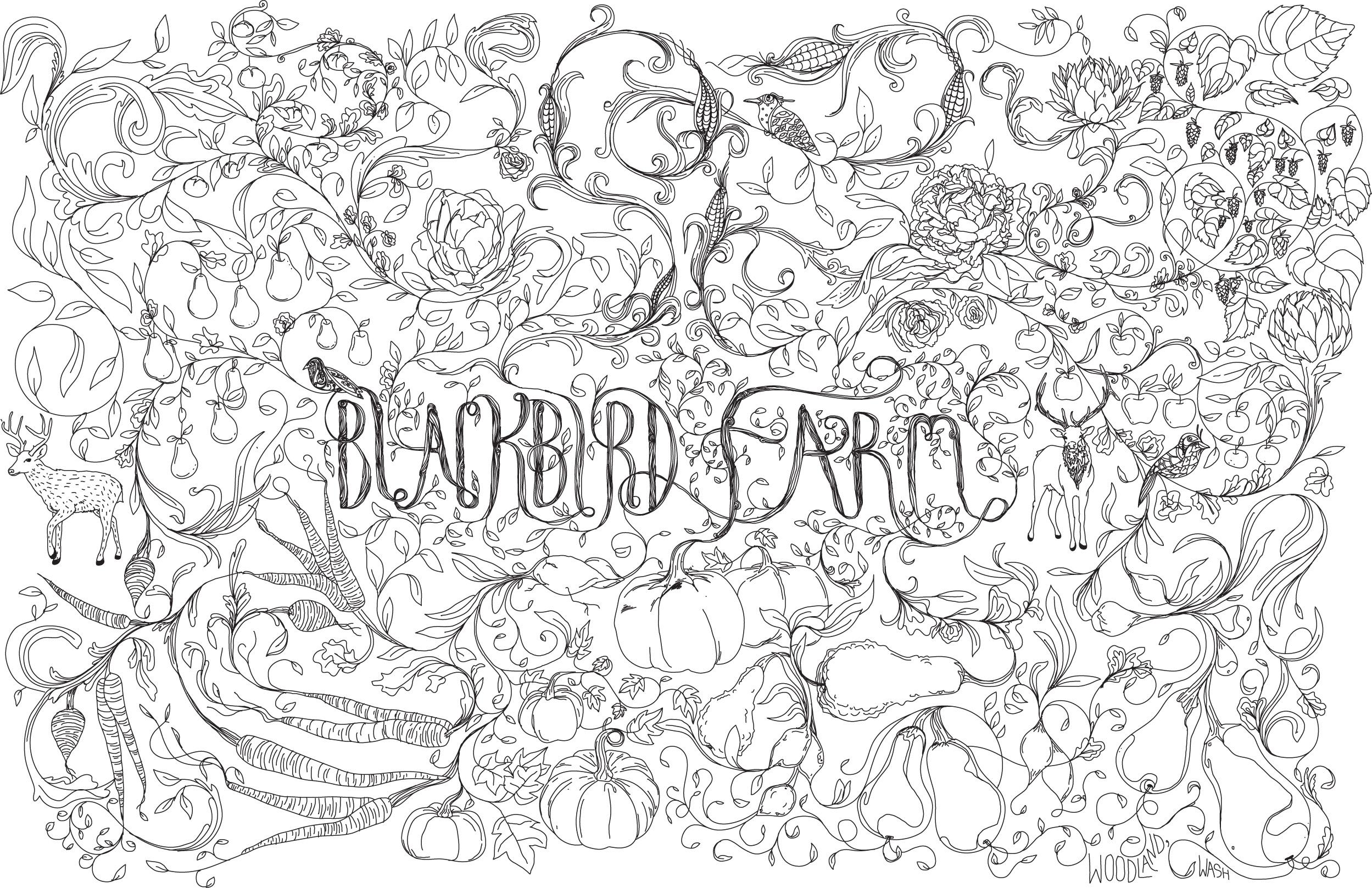 Blackbird_Farm_Art.jpg