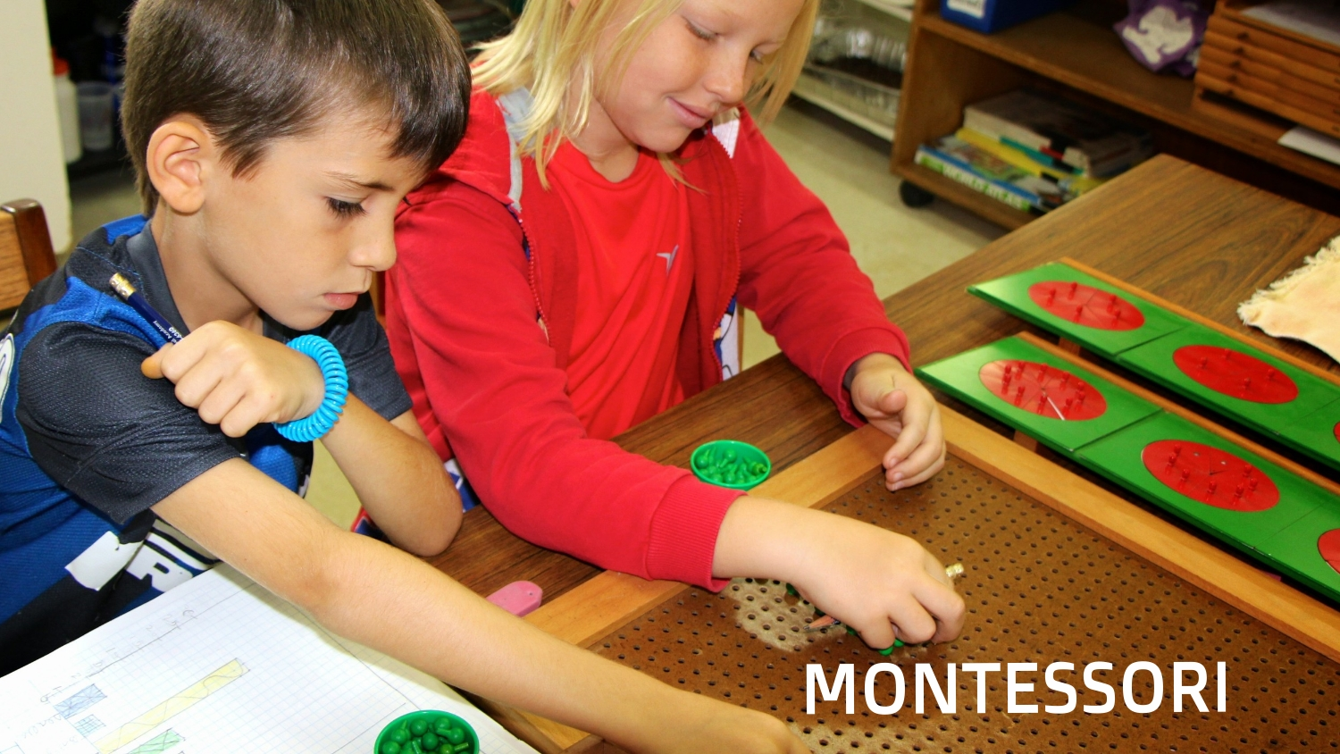 "We are an accredited Association Montessori Internationale school for ages 3 - 12.  ""What if education were about giving every developing brain its best shot?"" Dr. Steve Hughes"