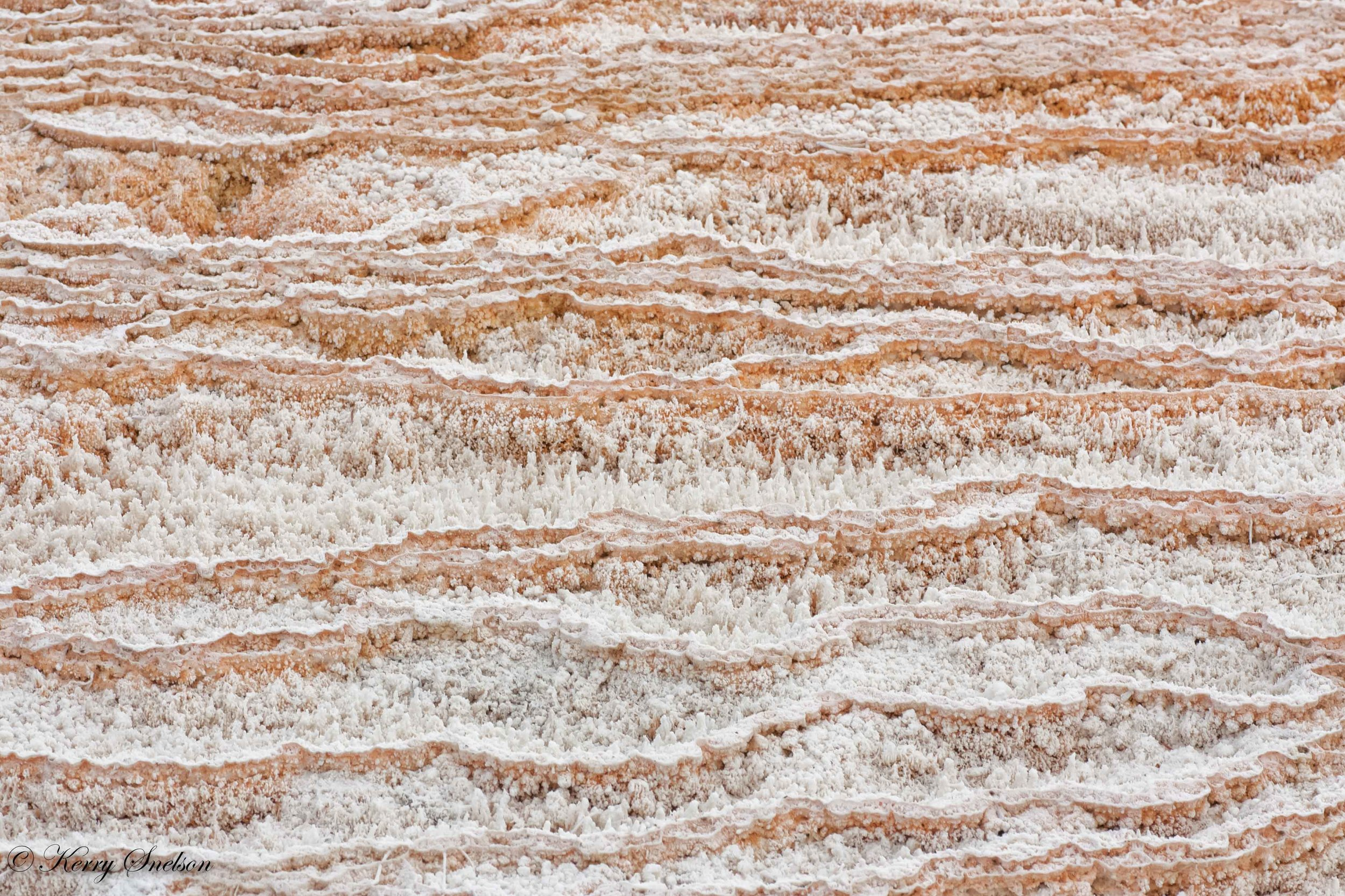 Travertine Terracettes