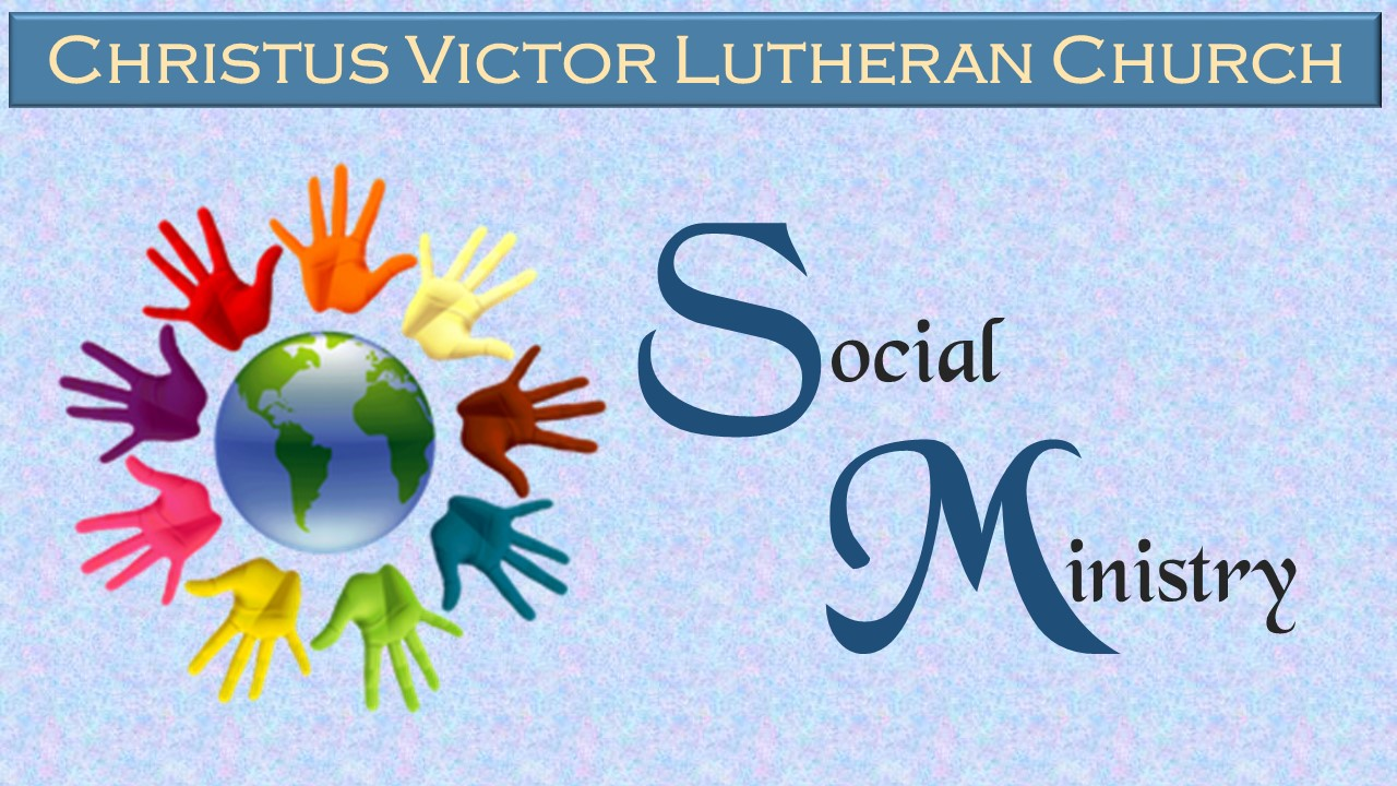 Social Ministry –    Ann DeBartolo