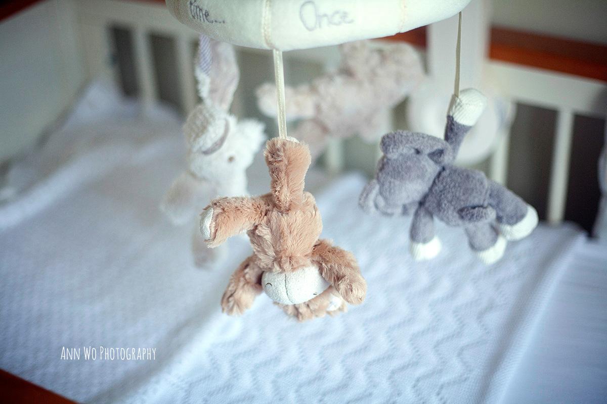 ann-wo-photography-newborn-enfield041.jpg