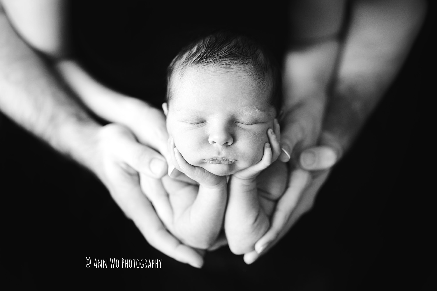 creative-newborn-baby-photography-sleeping-in-parents-hands-1-black.jpg